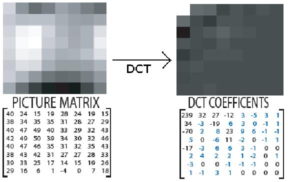 Transformation of 8 x 8 picture matrix to DCT coefficients